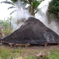 Making charcoal for sale in the Amazon.